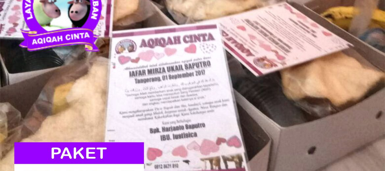 Harga Nasi Box Paket Standar - Aqiqah Tangerang